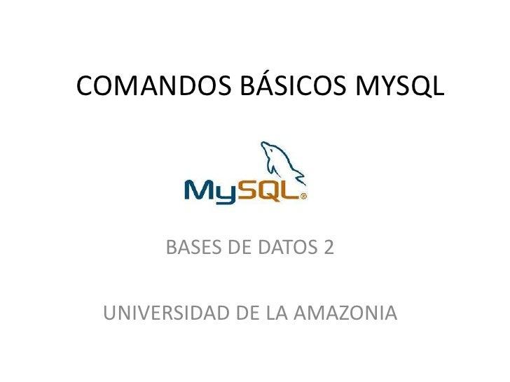 COMANDOS BÁSICOS MYSQL<br />BASES DE DATOS 2<br />UNIVERSIDAD DE LA AMAZONIA<br />