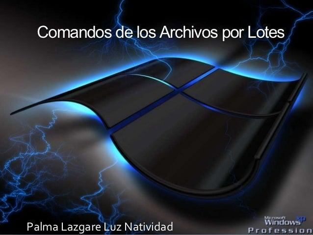 Comandos de los Archivos por LotesPalma Lazgare Luz Natividad
