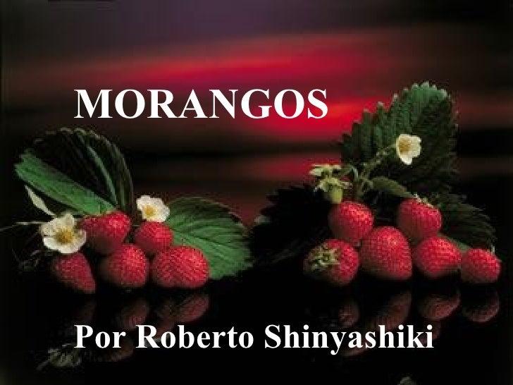 MORANGOS Por Roberto Shinyashiki
