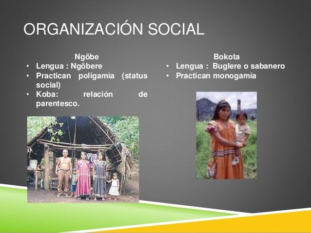 ORGANIZACIÓN SOCIAL Ngöbe • Lengua : Ngöbere • Practican poligamia (status social) • Koba: relación de parentesco. Bokota ...
