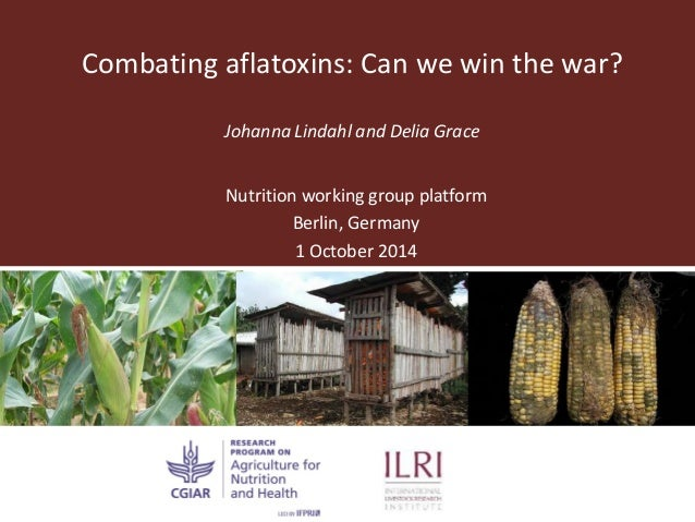 Combating aflatoxins: Can we win the war? Johanna Lindahl and Delia Grace Nutrition working group platform Berlin, Germany...