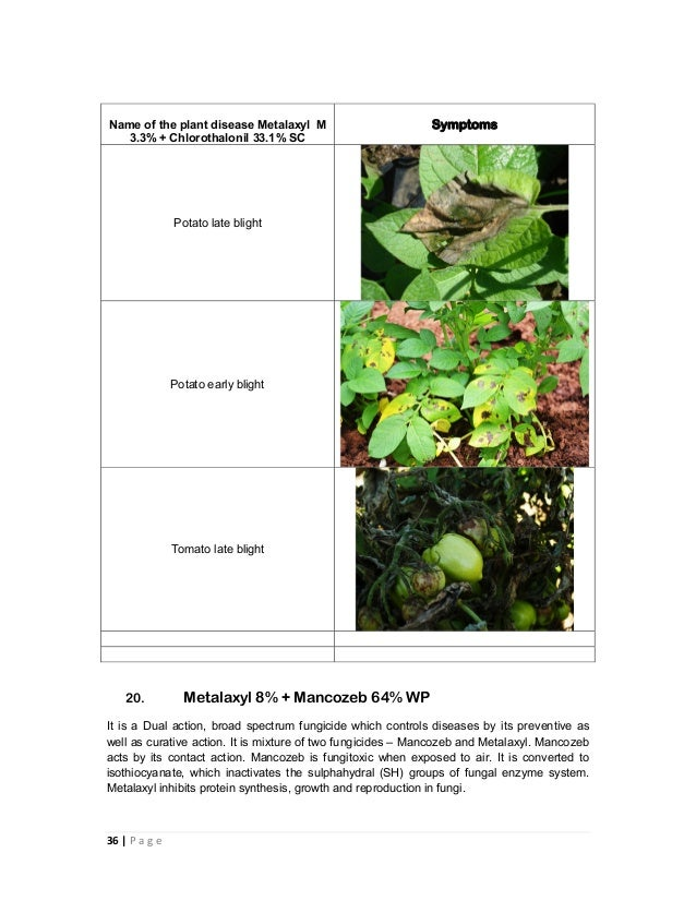 Combination fungicides in india and their uses
