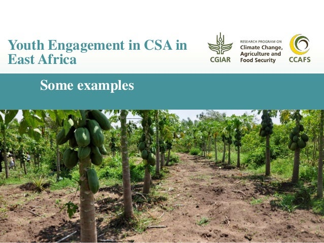 Youth CSA activities CCAFS is working with youth groups in East Africa: Smart farms – combination of CSA practices −Greenh...