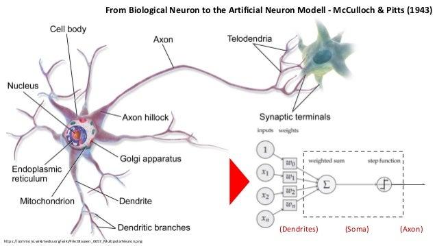 5 Combining Semantics And Deep Learning