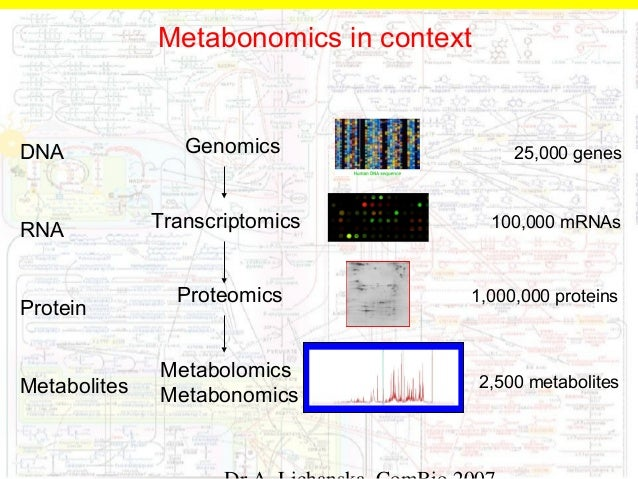 genes development and