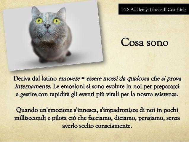 PLS Academy: Gocce di Coaching Cosa sono Deriva dal latino emovere = essere mossi da qualcosa che si prova internamente. L...