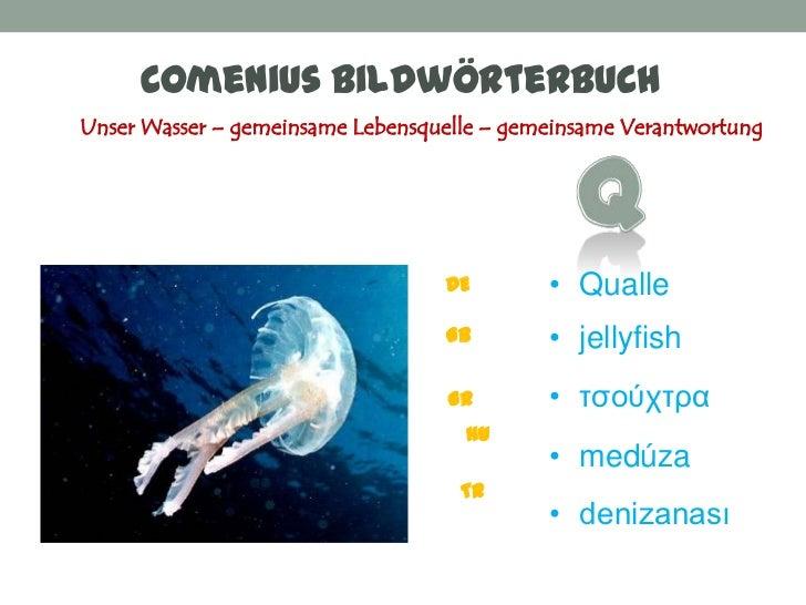 Comenius BildwörterbuchUnser Wasser – gemeinsame Lebensquelle – gemeinsame Verantwortung                                  ...