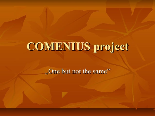 COMENIUS project ,,One but not the same""