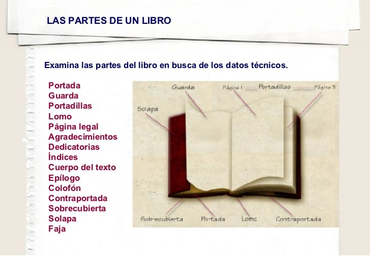 Portada Guarda Portadillas Lomo Página legal Agradecimientos Dedicatorias Índices Cuerpo del texto Epílogo   Colofón Contr...