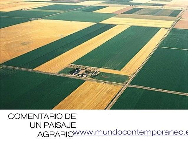 COMENTARIO DE UN PAISAJE AGRARIOwww.mundocontemporaneo.e
