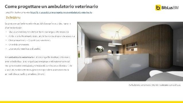 Ambulatorio Veterinario - veterinario gatti - Come ...