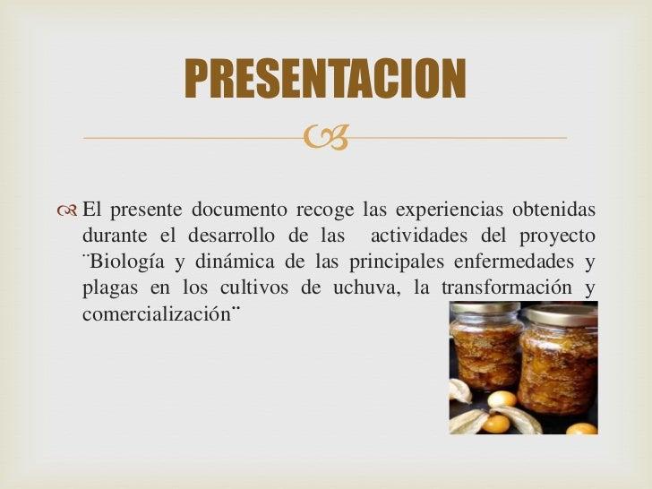 PRESENTACION                   El presente documento recoge las experiencias obtenidas  durante el desarrollo de las act...