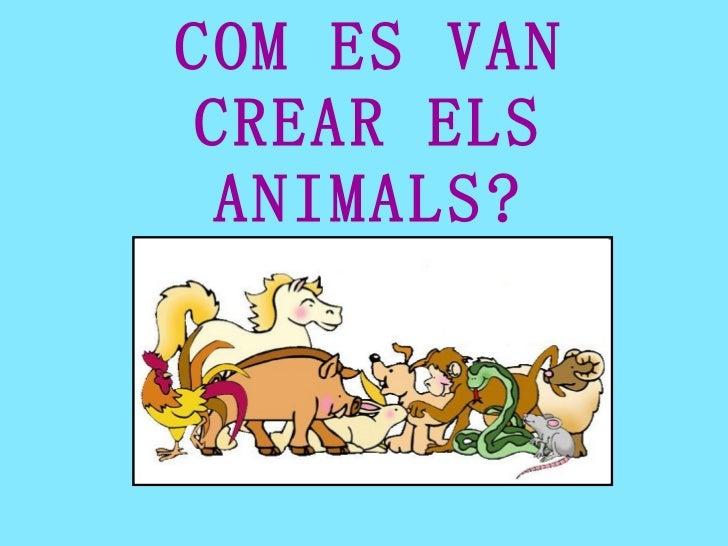 COM ES VAN CREAR ELS ANIMALS?