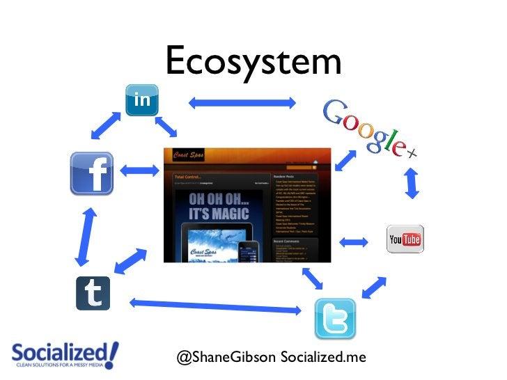Ecosystem@ShaneGibson Socialized.me