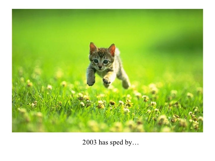 2003 has sped by…