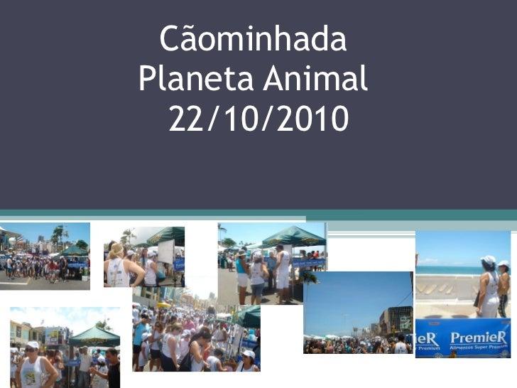 Cãominhada  Planeta Animal  22/10/2010