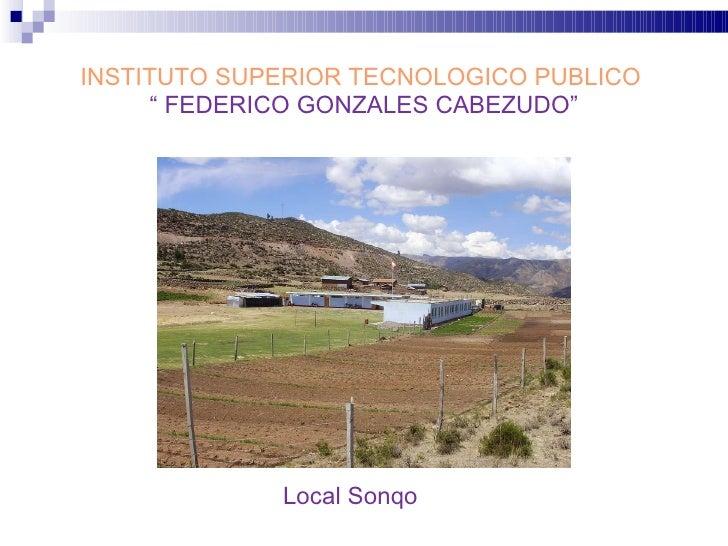 "INSTITUTO SUPERIOR TECNOLOGICO PUBLICO  "" FEDERICO GONZALES CABEZUDO"" Local Sonqo"