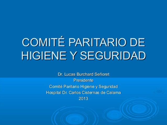 COMITÉ PARITARIO DEHIGIENE Y SEGURIDAD         Dr. Lucas Burchard Señoret                  Presidente    Comité Paritario ...