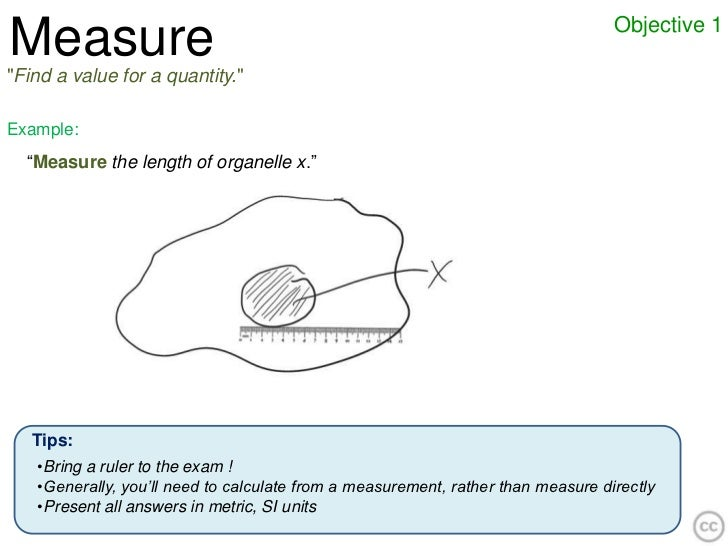 """Objective 1Measure""""Find a value for a quantity.""""Example:  """"Measure the length of organelle x.""""   Tips:   •Bring a ruler to..."""