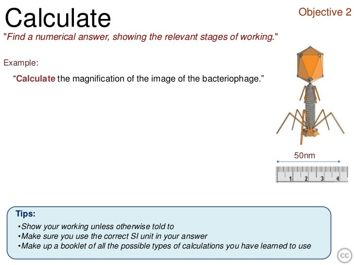 """Objective 2Calculate""""Find a numerical answer, showing the relevant stages of working.""""Example:  """"Calculate the magnificati..."""