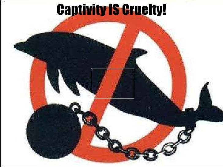 Captivity IS Cruelty!