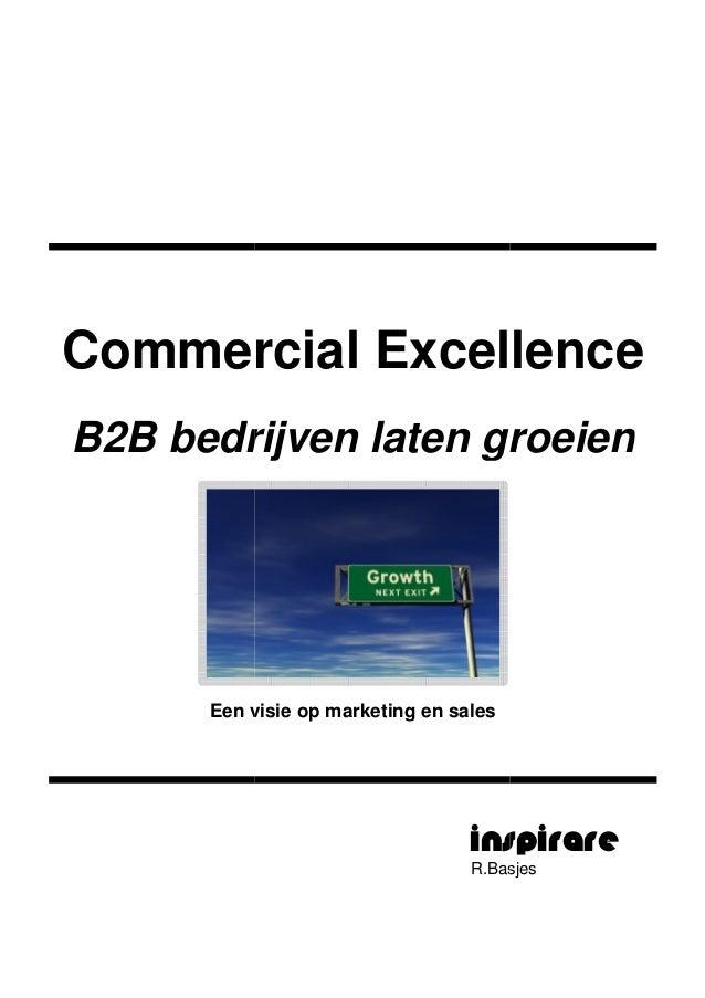 Commercial ExcellenceB2B bedrijvenEen visie op marketing en salesCommercial ExcellenceB2B bedrijven laten groeienEen visie...