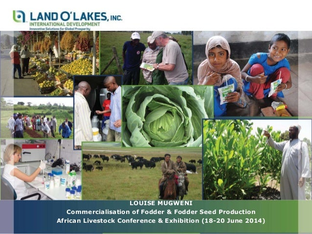 LOUISE MUGWENI Commercialisation of Fodder & Fodder Seed Production African Livestock Conference & Exhibition (18-20 June ...
