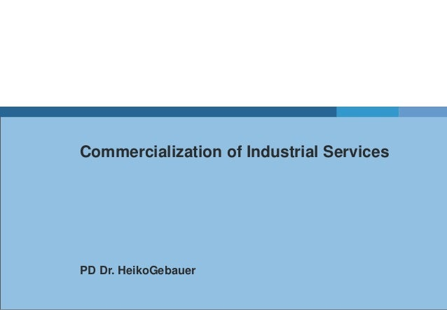 Commercialization of Industrial ServicesPD Dr. HeikoGebauer