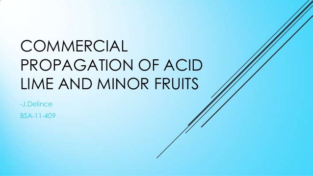 COMMERCIAL PROPAGATION OF ACID LIME AND MINOR FRUITS -J.Delince BSA-11-409