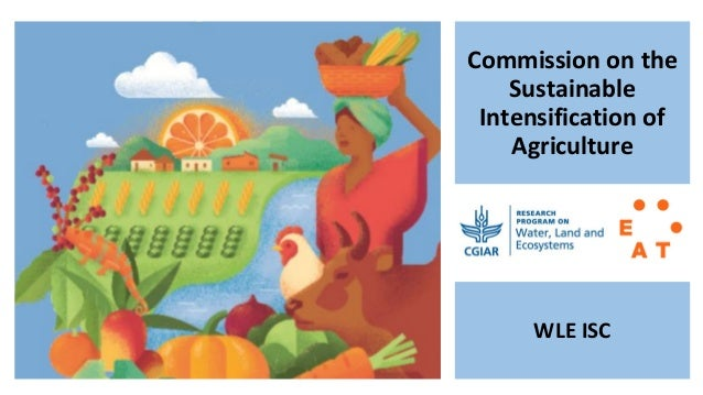 Commission on the Sustainable Intensification of Agriculture WLE ISC