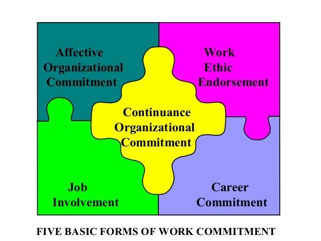Commitment Vs Involvement: Commitment2