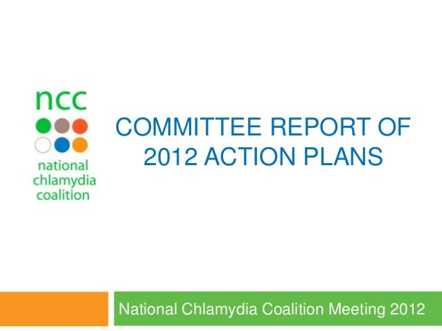 COMMITTEE REPORT OF 2012 ACTION PLANS National Chlamydia Coalition Meeting 2012