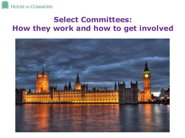 Select Committees: How they work and how to get involved