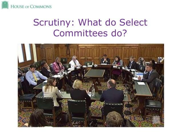 Select Committees Slide 3