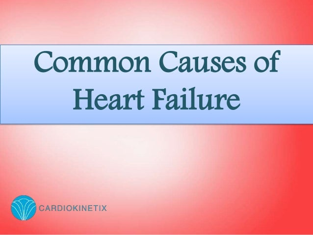 term papers on heart disease Heart disease is the leading cause of death in the us learn about the different types of heart diseases, and what you can do to try to prevent them.