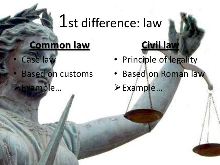 Common law essay example for free.