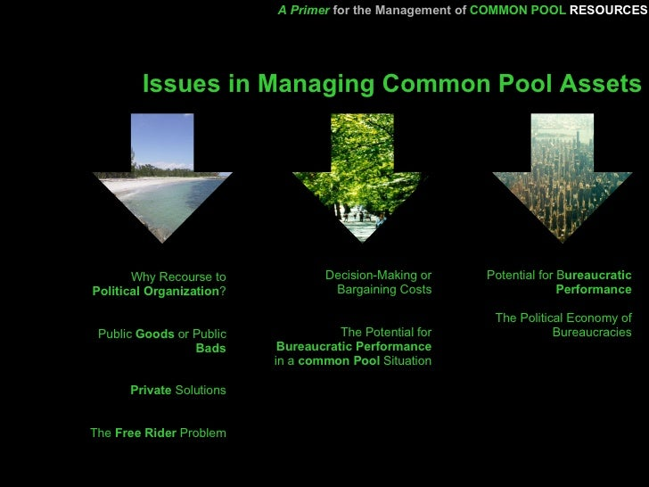 Common Pool Theory