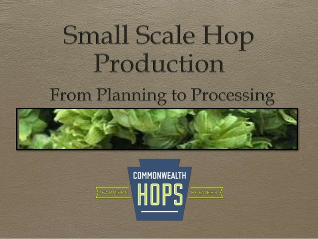Tess Weigand Joshua Brock Happy Valley Hop Yard is a one acre yard in Coburn that has been providing local breweries with ...