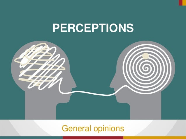 PERCEPTIONS General opinions