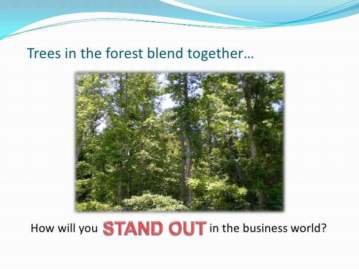 Trees in the forest blend together…<br />STAND OUT <br />How will you                                      in the business...