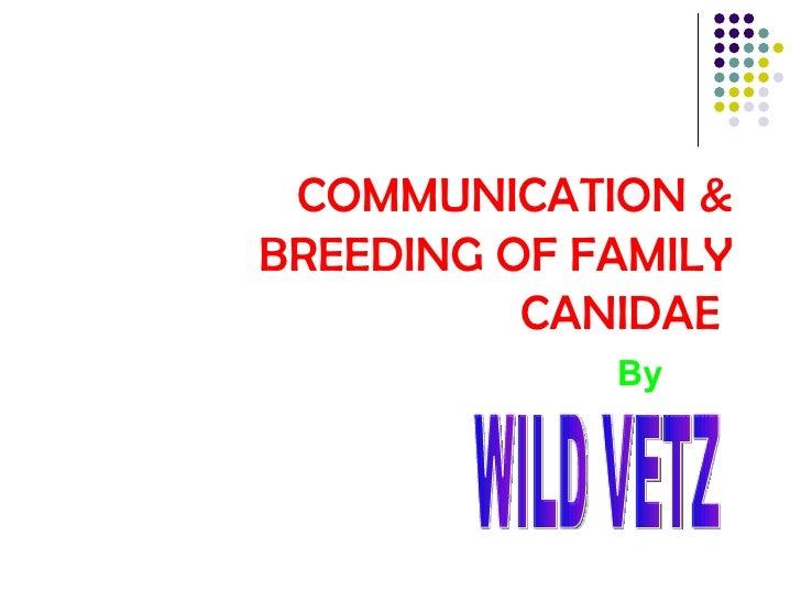 COMMUNICATION & BREEDING OF FAMILY CANIDAE  By   WILD VETZ