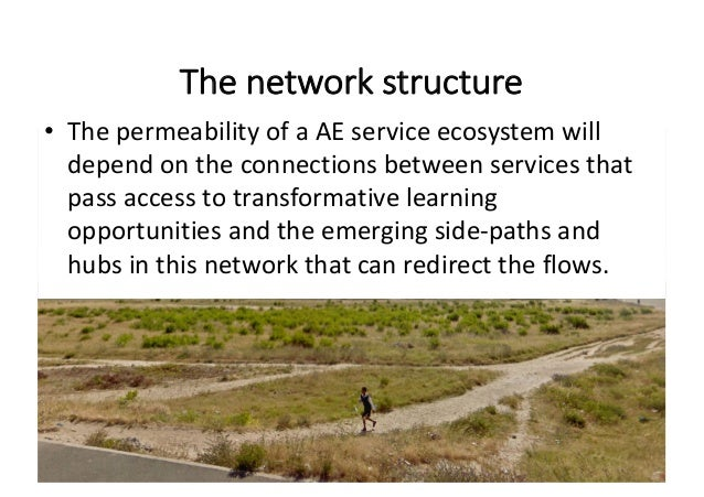 Thenetworkstructure • ThepermeabilityofaAEservice ecosystemwill dependontheconnectionsbetweenservicesthat ...