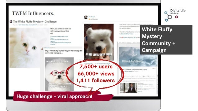 White Fluffy Mystery Community + Campaign Huge challenge – viral approach! 7,500+ users 66,000+ views 1,411 followers
