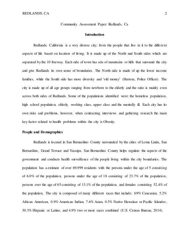 Community Assessment Paper Essay Sample