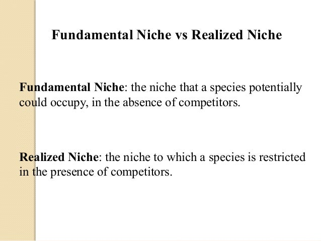 fundamental vs realized niches Fundamental vs realized niches: fundamental and realized fundamental niche  realized niche the realized niche of an organism is often smaller than the.