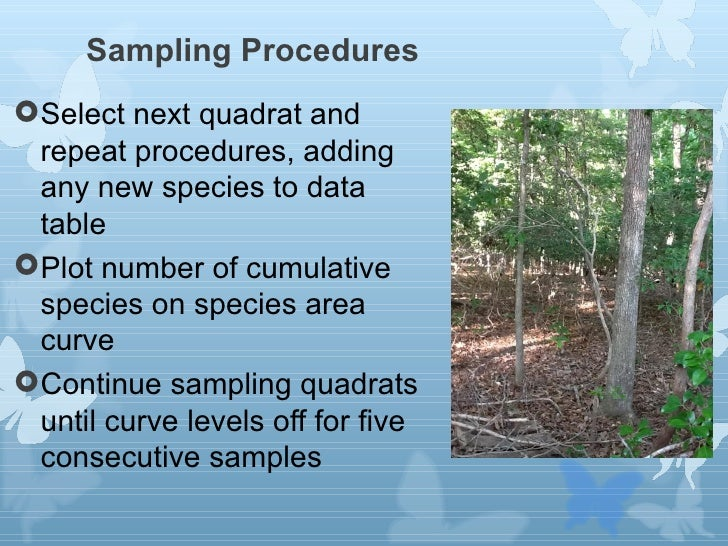 lab on species diversity Containing five species each measuring biodiversity (revised) species diversity and is a measure in this lab, we will compare the species diversity of two.