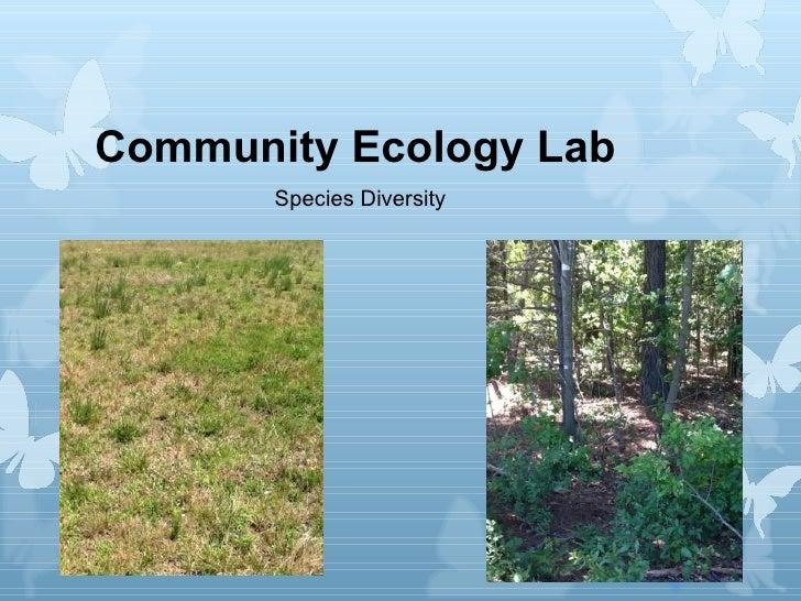 Community Ecology Lab       Species Diversity