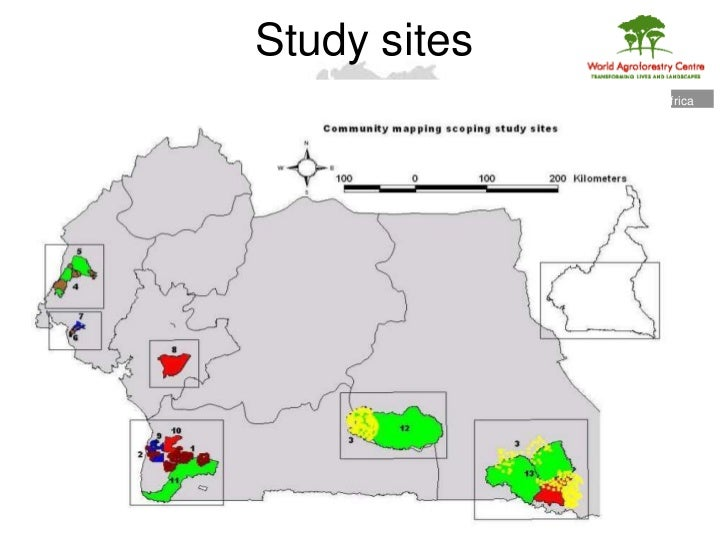 a study on forestry operations and management in cameroon Management conflicts in cameroonian community forests drawing on a few case studies in southern cameroon forest management appears as just another way.