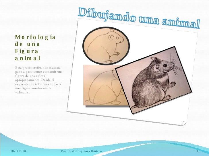 Morfología  de una Figura animal <ul><li>Esta presentación nos muestra paso a paso como construir una figura de una animal...
