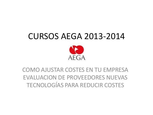 CURSOS AEGA 2013-2014  COMO AJUSTAR COSTES EN TU EMPRESA EVALUACION DE PROVEEDORES NUEVAS TECNOLOGÍAS PARA REDUCIR COSTES